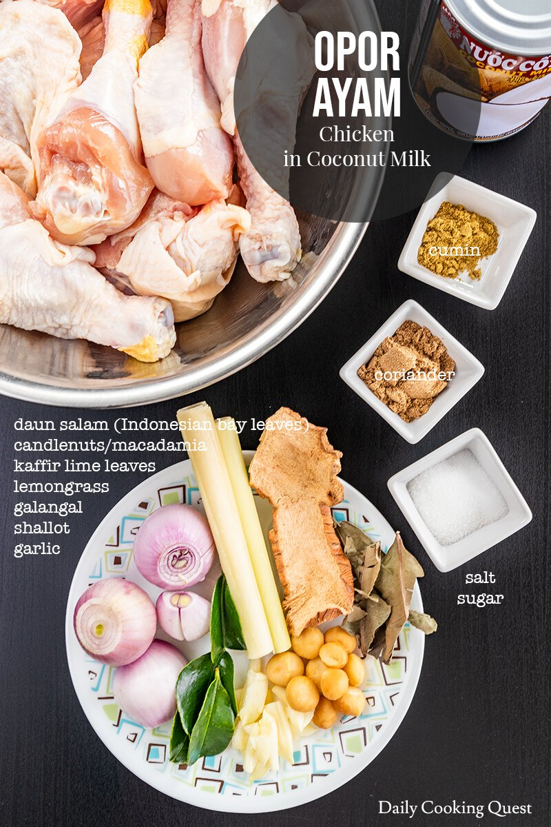 Ingredients for Opor Ayam - Chicken in Coconut Milk