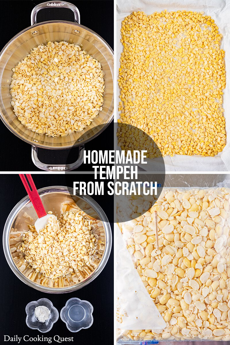 Homemade tempeh guide: (1) Boil the dehulled soybeans. (2) Dry soybeans with a kitchen towel. (3) Mix soybeans with white distilled vinegar and tempeh starter. (4) Transfer soybeans to a ziplock bag and use a toothpick to poke the bag with holes.