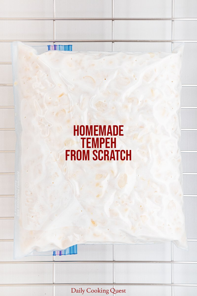 After 24 hours in the proofer, the tempeh should be properly set and fully cultured.
