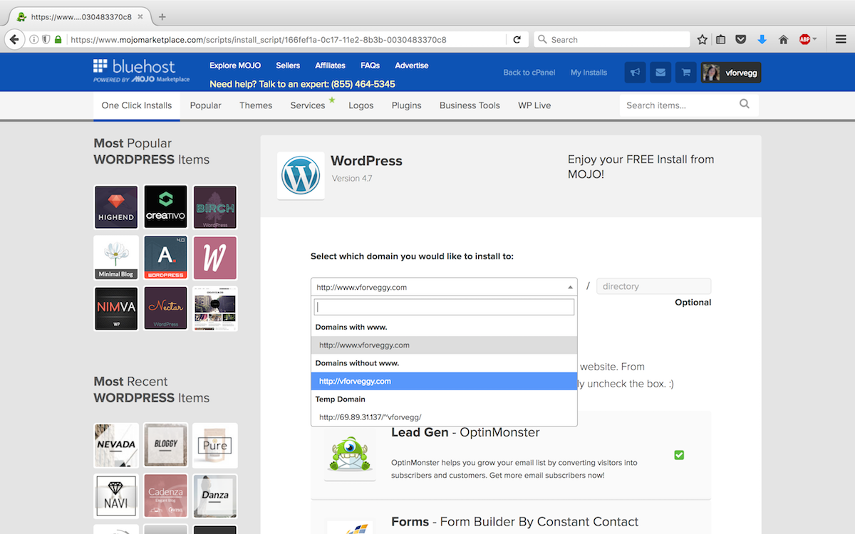 Step 2 - Install WordPress to your domain.